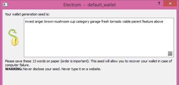 How to set up Electrum step 2
